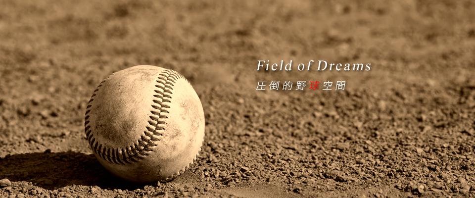 Field of Dreams圧倒的野球空間
